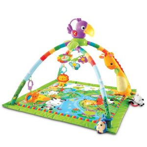 Best Play Mat For Babies 2018